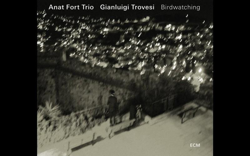 ANAT FORT TRIO: BIRDWATCHING